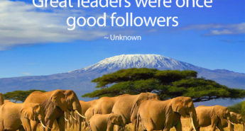 Quote about Great Leaders