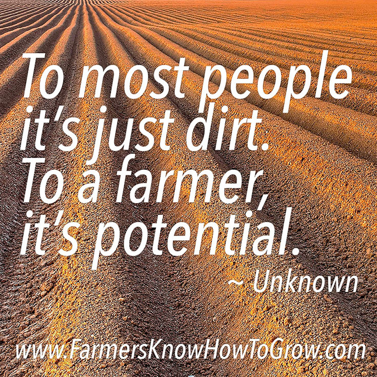 Just Dirt Quote