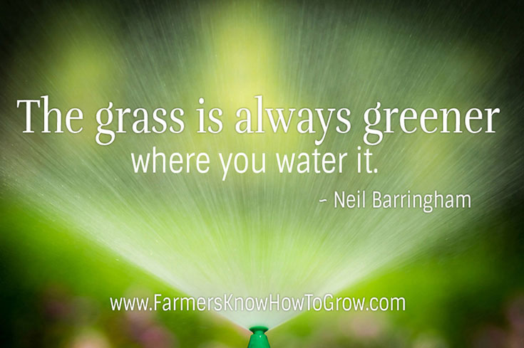 Grass Is Always Greener Quotes: Neil Barringham Quote