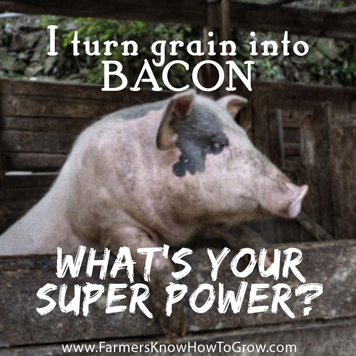 Super Power Quote