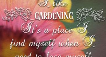 Alice Siebold on Gardening