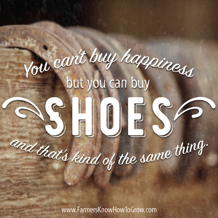 Can't Buy Happiness Quote
