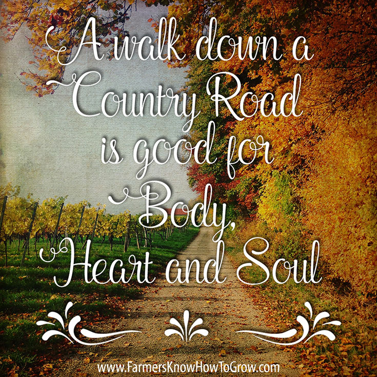 Country Road Quote