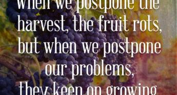 Jane Austen Quote about Apple Pie