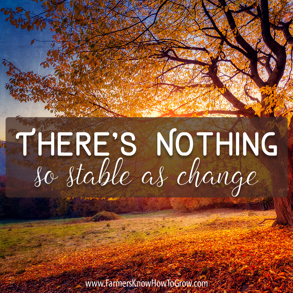 Stable As Change Quote