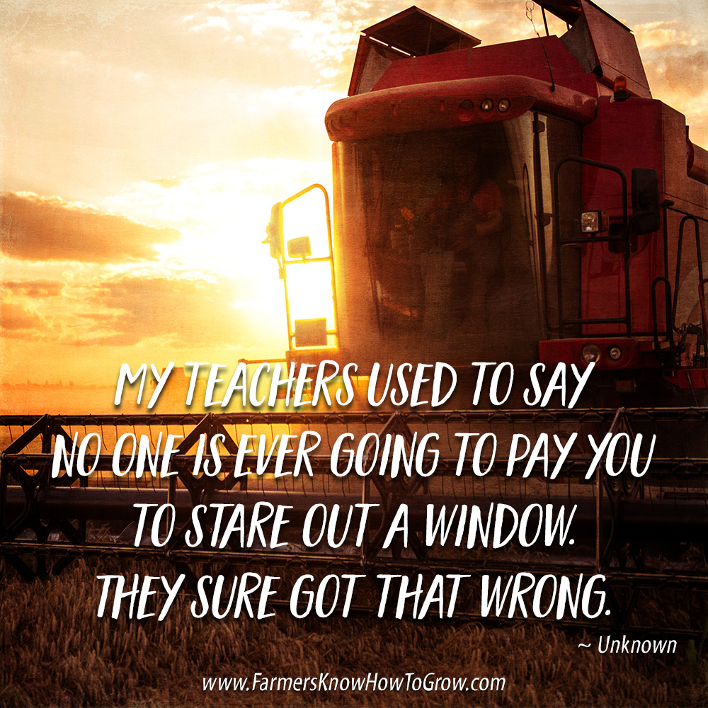 Farming Quotes: Staring Out Windows