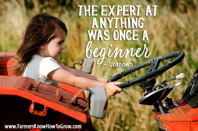 Beginners and Experts Quote