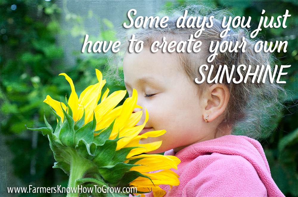 Make Your Own Sunshine Quotejpg Randy Frazier