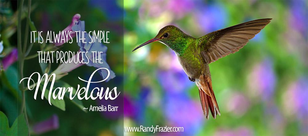 Amelia Barr Quote