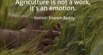 Kottinti Sitaram Reddy Quote
