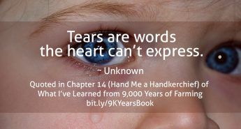 Quote about Tears