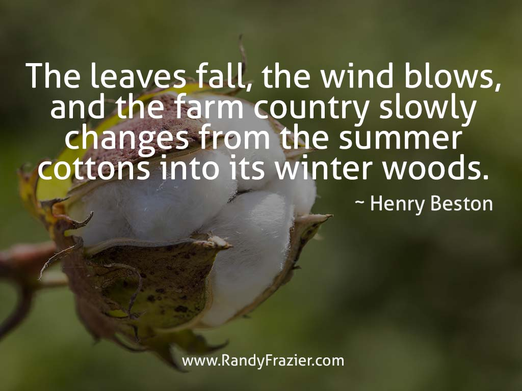 Henry Beston Quote