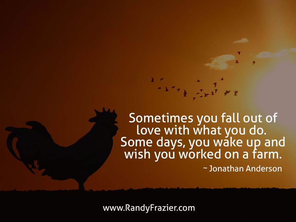 Jonathan Anderson Quote