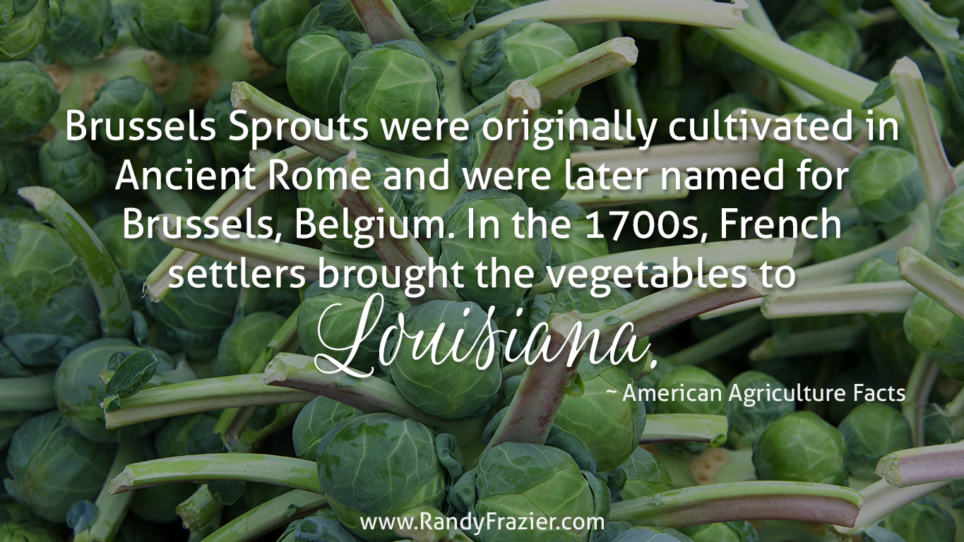 Ag Fact about Brussels Sprouts
