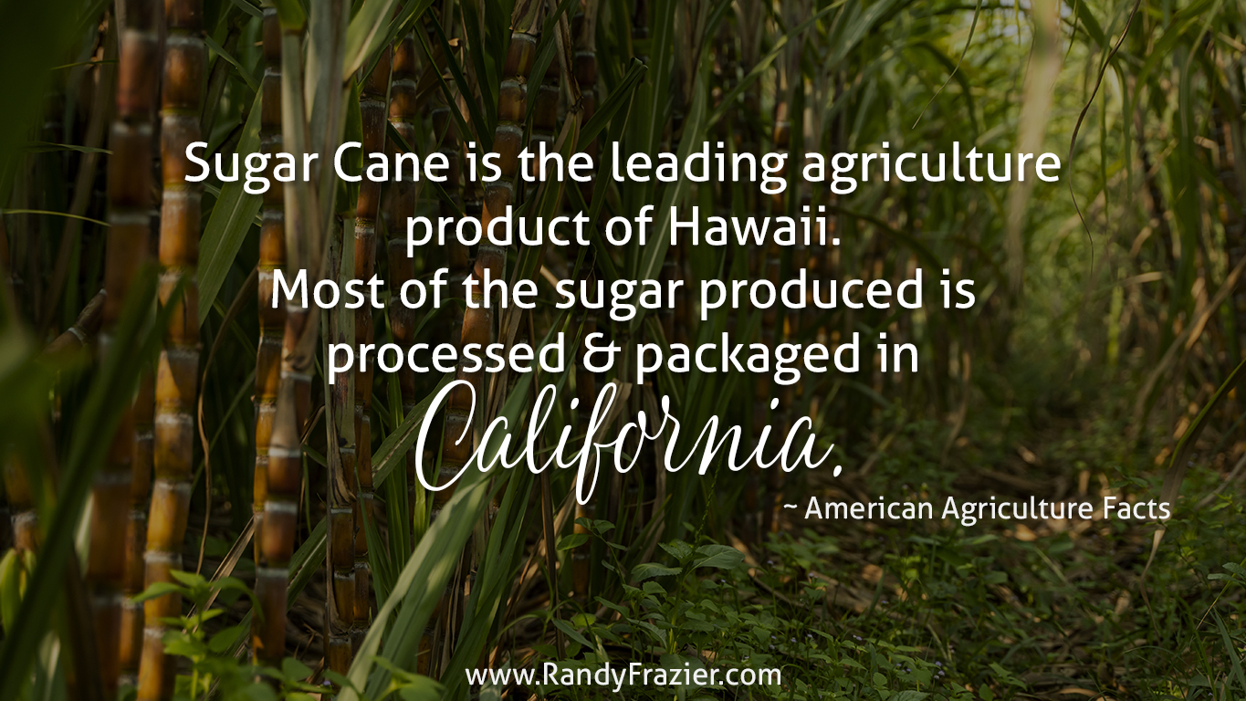 Ag Facts about Sugar Cane