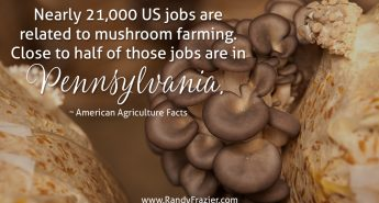 Ag Fact about Mushroom Farms
