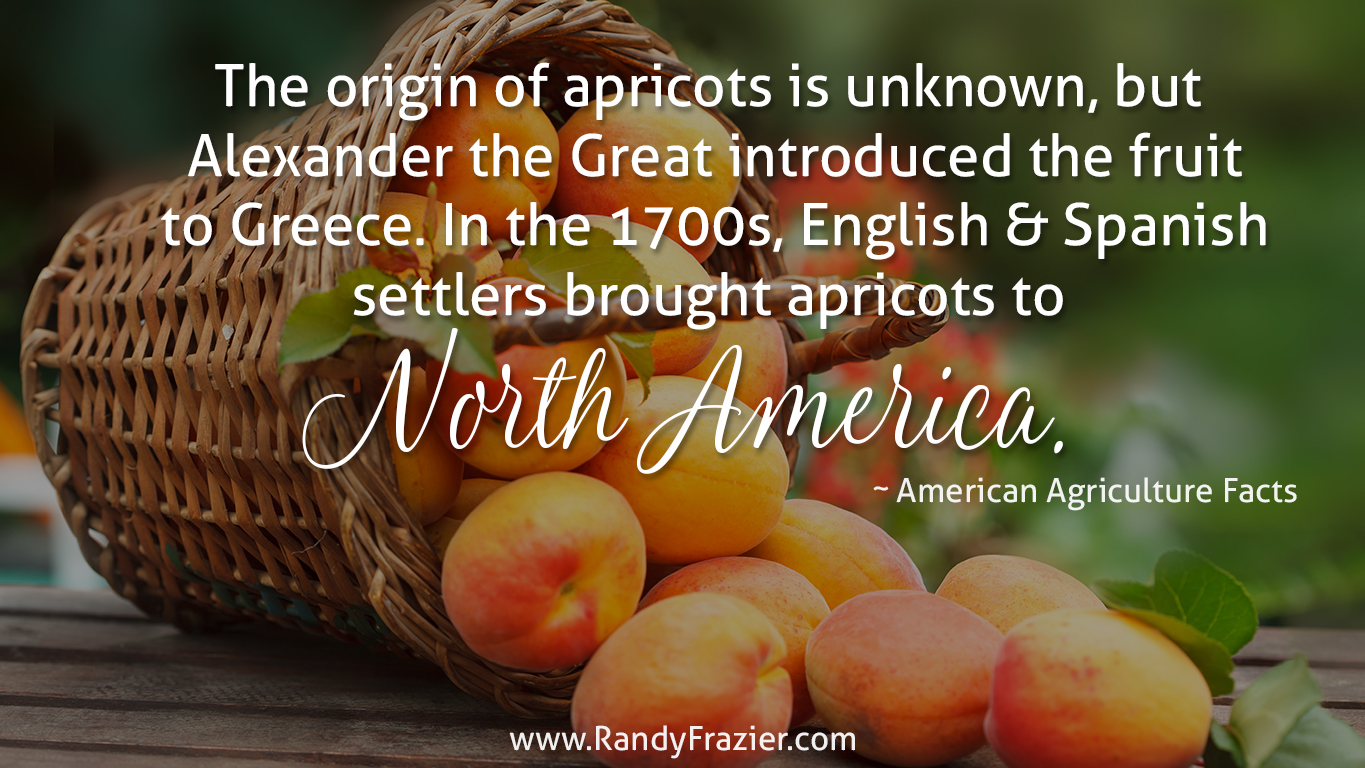 Ag Facts about Apricots