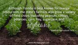 Ag Facts about Florida