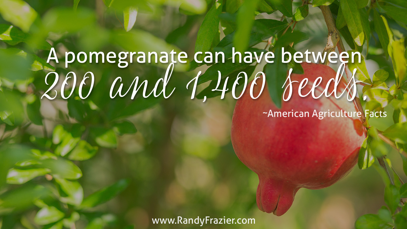 Ag Facts about Pomegranates
