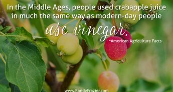 Ag Facts about Crabapples