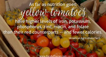 Ag Facts about Yellow Tomatoes