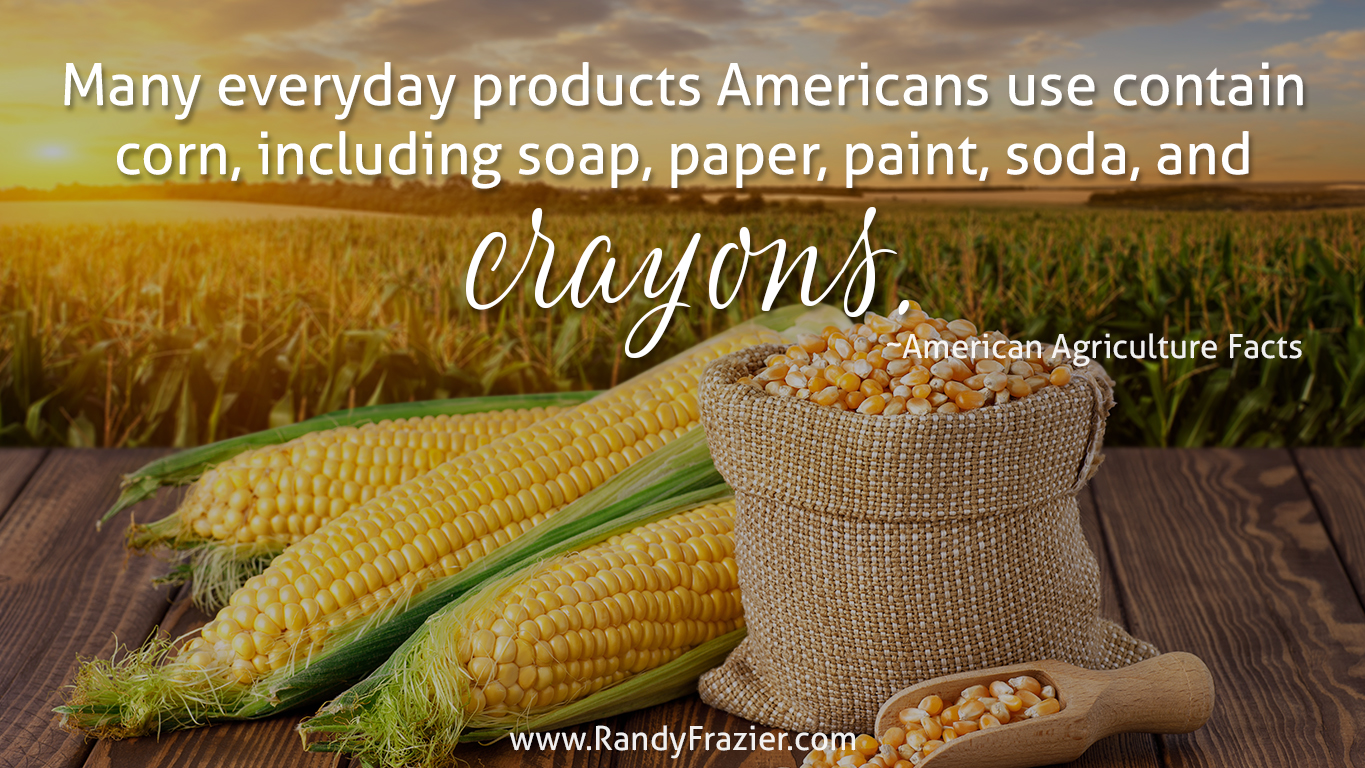 Ag Facts about Corn