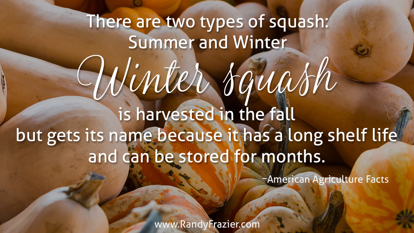 Ag Facts about Winter Squash