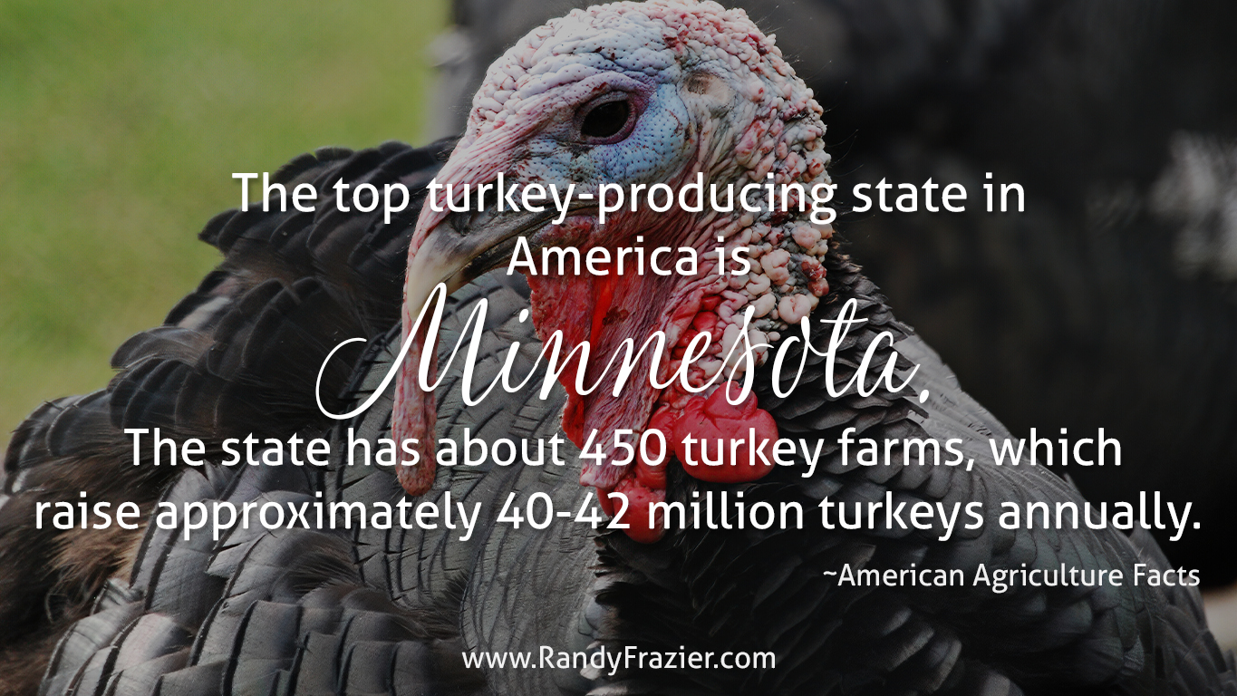 Ag Facts about Turkeys