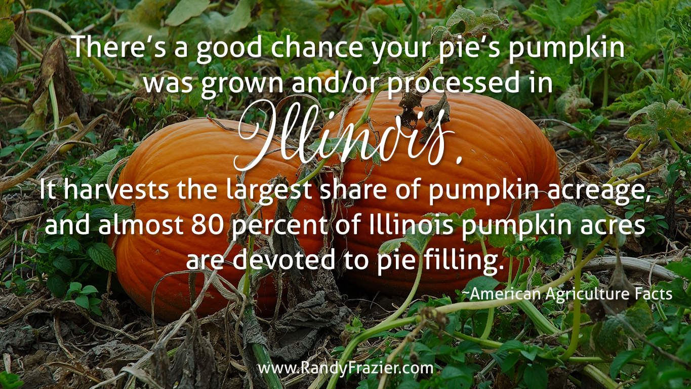 Ag Facts about Pumpkins