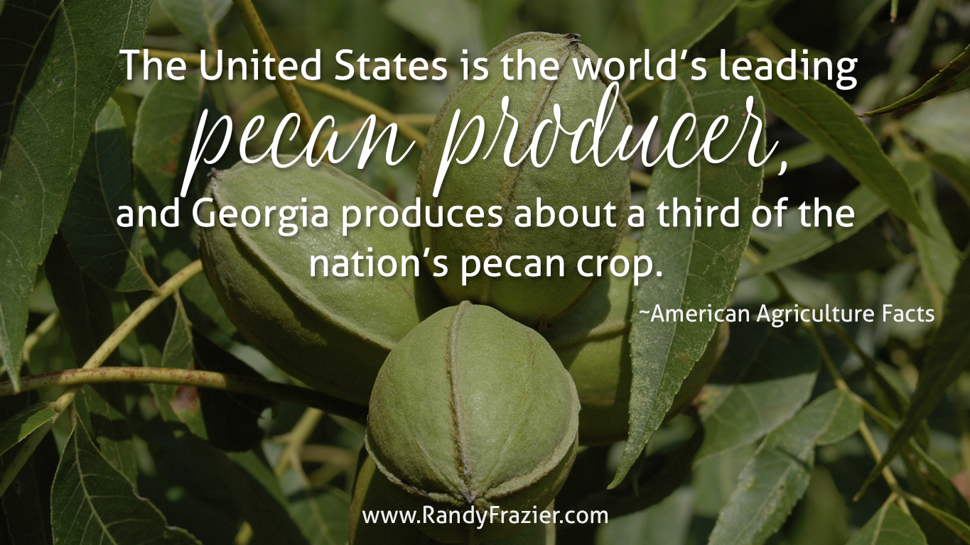 Ag Facts about Pecans