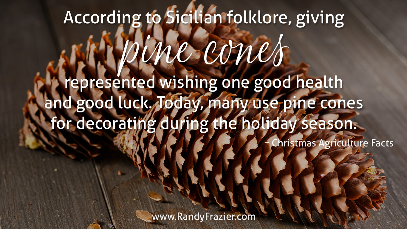 Christmas Ag Facts: Pine Cones