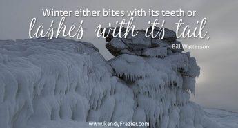 Bill Watterson Quote